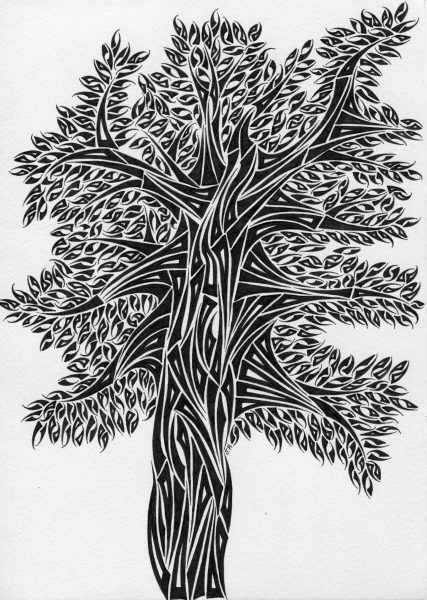 spider-tree-small